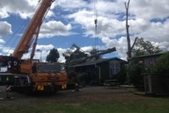 crane-lifting-tree-off-house-Galatea